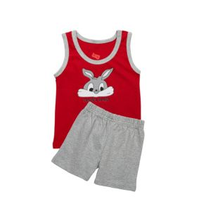 AllureP Red Rabbit S-L Grey Shorts